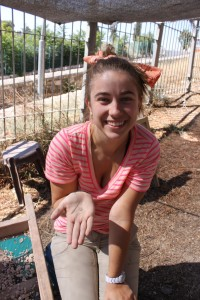 Support the Mount Zion Dig